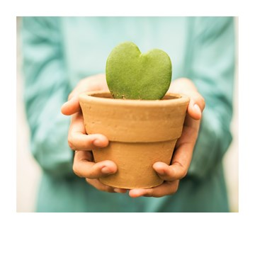 - Verhuiskaart-hartjes-cactus-Polaroid